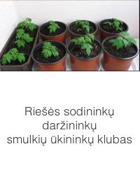 Riešės sodininkų / daržininkų / smulkių ūkininkų klubas